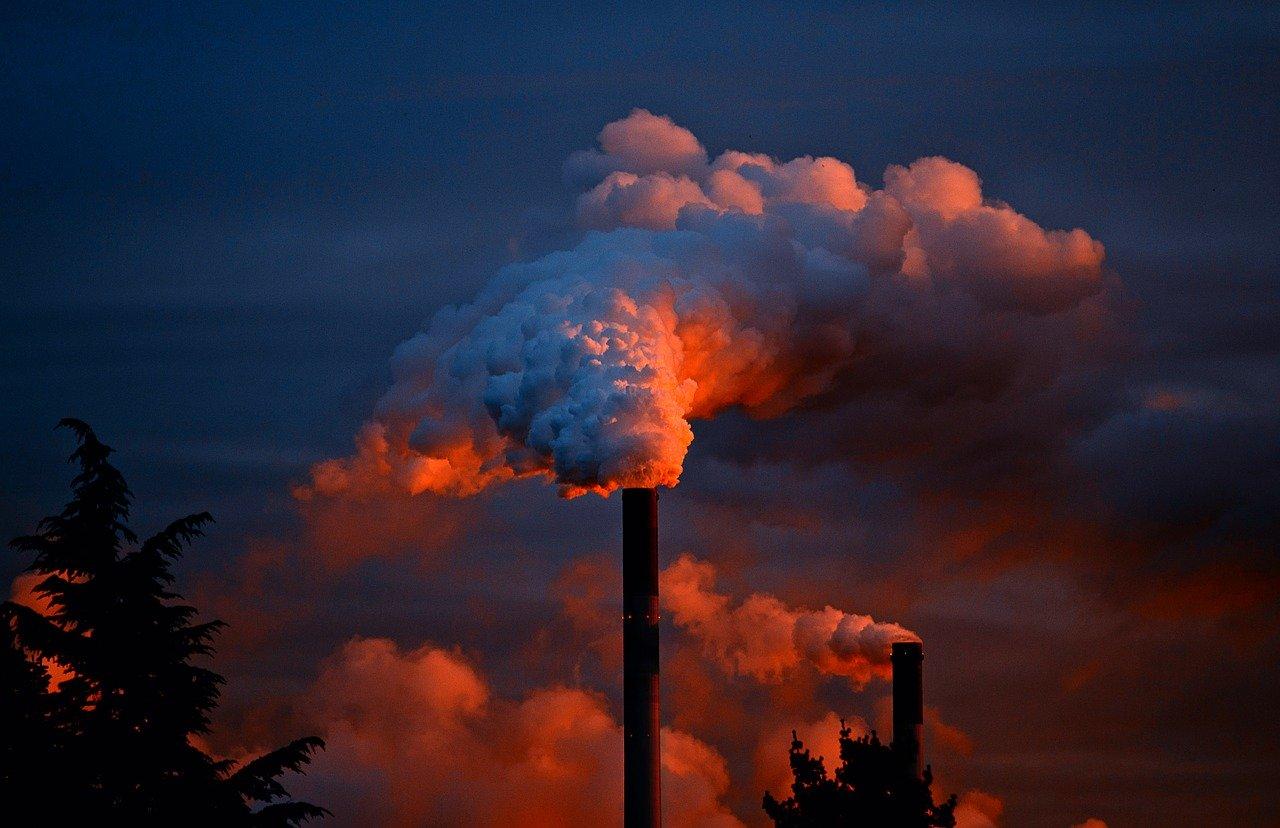 排出権取引